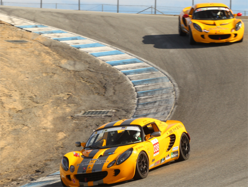 Elise #038 in the corkscrew